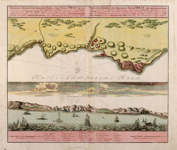 800.08 Algeria - Homann- Rare World Prints and Maps for Sale